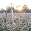 Первые заморозки, небольшие дожди: прогноз погоды на выходные 4 и 5 сентября