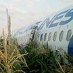 Самолет совершил аварийную посадку в подмосковном Жуковском: в оба двигателя попали птицы