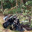 Пассажирка легковушки погибла в результате ДТП в Ганцевичском районе