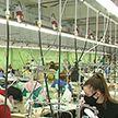 2500 человек нашли новую работу в Витебске в 2020 году. Центры занятости поддерживают начинающих и доплачивает нанимателям