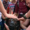 Один день в армии: школьники знакомятся с военной жизнью