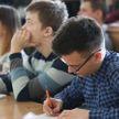 Система образования требует совершенствования, в течение года определимся, что делать – Лукашенко