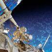 Ученый: вместе с киноэкипажем в космос слетал «биоэкипаж» мух-дрозофил