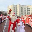 В Могилёве шесть дней подряд будут проходить шествия Дедов Морозов