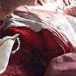 В Волковысском районе в убийстве бабушки обвиняют внука
