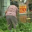 Очередной мощный тайфун обрушился на Китай