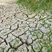 Новая Зеландия ввела режим ЧС в связи с изменением климата