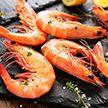 Фестиваль креветок собрал в Бельгии любителей морепродуктов со всего мира