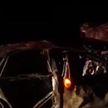 Volkswagen врезался в микроавтобус с людьми на трассе Могилёв – Гомель: рассказ пассажира
