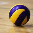 Чемпионат Беларуси по волейболу приостановлен