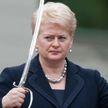Глеб Лавров: Почему ООН не остановит Литву (а Литва не остановит нелегалов)?