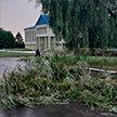 Повалены деревья, сорваны крыши и повреждены авто: сильный ветер обрушился на Беларусь (ФОТО ПОСЛЕДСТВИЙ)