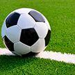 В чемпионате Беларуси по футболу проходят матчи 28-го тура