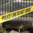 Семилетняя девочка погибла в результате стрельбы в Чикаго