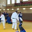 Международный турнир по дзюдо в Минске: почти 500 спортсменов и более 40 стран