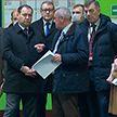 Головченко поручил доработать программу развития электротранспорта на ближайшие 5 лет