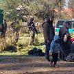 В ООН жестко раскритиковали закон о выдворении мигрантах, принятый в Польше