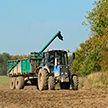 Обед и ужин – в  поле: механизаторы показали, как проходит сев озимых в Витебской области