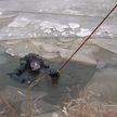 Несколько смертей за неделю: почему любителей рыбалки не останавливает ни оттепель, ни здравый смысл?