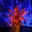 Зоопарк Лос-Анджелеса в ожидании Рождества: свыше 500 тыс. светодиодов, танцующие фонтаны, гигантские фигуры животных из стекла