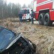 Автомобиль с тремя пассажирами вылетел в кювет в Городокском районе