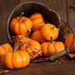 Очищение и лечение: рассказываем о полезных свойствах тыквы