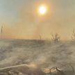 Сильные пожары в Калифорнии: эвакуация населения продолжается