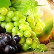 Стало известно, как виноград помогает в омоложении