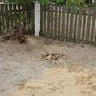 Человеческие останки обнаружили на школьном дворе в Лунинецком районе