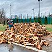 Выходной Президента: Александр Лукашенко рубит дрова на малой родине в Александрии
