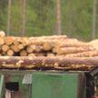 Пеллетное производство запустили в Борисовском районе