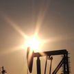 Цена на нефть опустилась в начале торгов на бирже более чем на 9%