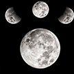 Лунный календарь на неделю с 14 по 20 октября: благоприятные дни для самых смелых начинаний и закрытия дачного сезона