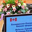 Белорусско-канадский бизнес-форум в Минске: заводы Bombardier по выпуску самолётов могут появиться в Беларуси
