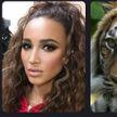 Новый флешмоб в Сети: знаменитости узнают, на какого животного они похожи