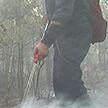 Крупный пожар не удаётся потушить на Ольманских болотах