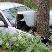 Машина врезалась в дерево в Осиповичском районе, пострадали 4 человека. Водитель был пьян и без прав