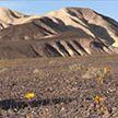 Рекордная жара в Долине Смерти: тепловой рекорд планеты может быть побит в Калифорнии