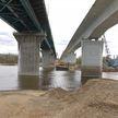 Старый мост через Сож начали демонтировать под Гомелем