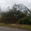 Ураган «Майкл» во Флориде унёс жизни как минимум двух человек