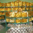 Золотовалютные резервы Беларуси за август–сентябрь снизились на 17,6%