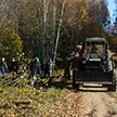 Чистый лес: во время экологического марафона убрали более 4,5 кубометров мусора