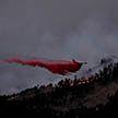 В Колорадо площадь пожара превысила 800 кв. км