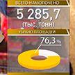 Уборочная кампания близится к завершению: Минщина – лидер по намолоту