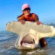 Женщина поймала огромную акулу-молот на удочку с крыши автомобиля