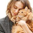 Почему кошки любят женщин больше, чем мужчин?
