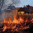 Выжигание сухой травы привело к гибели одного из жителей Гродненщины