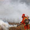 Авиация и даже «пожарный» танк. Как МЧС Беларуси готовится к сезону лесных пожаров (ВИДЕО)