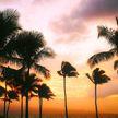 Вооруженный мужчина забаррикадировался в гостинице на Гавайях