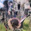 Литовцы бросили на линии границы беременную иностранку без сознания - ГПК